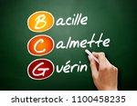bcg   bacillus calmette guerin... | Shutterstock . vector #1100458235