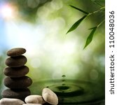 asian eco backgrounds with... | Shutterstock . vector #110048036