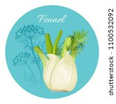 fennel condiment green... | Shutterstock .eps vector #1100532092
