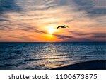 sunset seagulls birds ocean... | Shutterstock . vector #1100673875