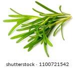 fresh herb  fresh rosemary... | Shutterstock . vector #1100721542
