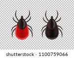 vector realistic isolated... | Shutterstock .eps vector #1100759066