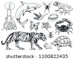 set of animals. reptile and... | Shutterstock .eps vector #1100822435