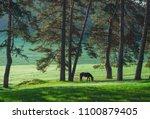 mystic sunrise over the dreamy... | Shutterstock . vector #1100879405