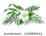 tropical white hibiscus floral... | Shutterstock .eps vector #1100896412