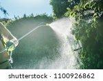 Gardener Insecticide Job. Caucasian Garden Worker with Spraying Equipment. - stock photo