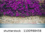 Stone Wall Covered With Purple...