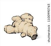 hand draw of ginger. vector... | Shutterstock .eps vector #1100990765