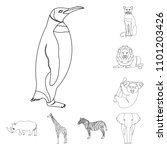 different animals outline icons ... | Shutterstock . vector #1101203426