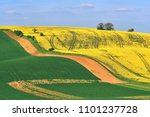 moravian tuscany. beautiful... | Shutterstock . vector #1101237728