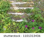 part of old stone staircase... | Shutterstock . vector #1101313436