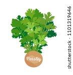 parsley spice poster  headline... | Shutterstock .eps vector #1101319646