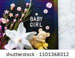baby girl background            ... | Shutterstock . vector #1101368312