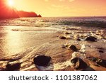 beautiful tropical pacific... | Shutterstock . vector #1101387062