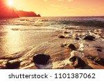 beautiful tropical pacific... | Shutterstock . vector #1101387062