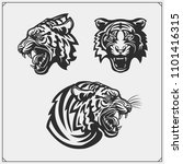 set of tiger heads. | Shutterstock .eps vector #1101416315