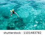 crystal clear water snorkeling | Shutterstock . vector #1101483782