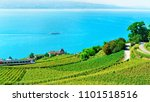 lavaux  switzerland   august 30 ... | Shutterstock . vector #1101518516