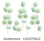 set of green branches on white...   Shutterstock . vector #1101575612