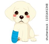young little sad dog sitting... | Shutterstock .eps vector #1101641348