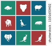 wildlife icon. collection of 9... | Shutterstock .eps vector #1101653402