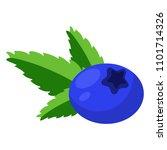 blueberry illustration  ... | Shutterstock .eps vector #1101714326