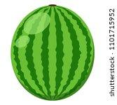 watermelon illustration   whole ... | Shutterstock .eps vector #1101715952