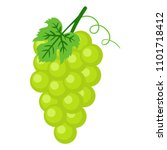 green grapes illustration  ... | Shutterstock .eps vector #1101718412