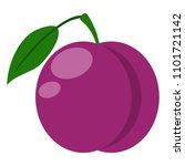 plum illustration   plum with... | Shutterstock .eps vector #1101721142