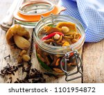 polish or russian picked forest ... | Shutterstock . vector #1101954872