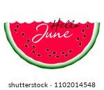 hello june text on sweet... | Shutterstock .eps vector #1102014548