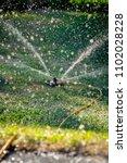 lawn sprinkler spraying water... | Shutterstock . vector #1102028228