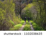 two people walking on a forest... | Shutterstock . vector #1102038635