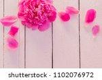 pink peonies on wooden... | Shutterstock . vector #1102076972