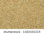 rye grains  surface and... | Shutterstock . vector #1102101215
