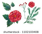 watercolor illustration of a... | Shutterstock . vector #1102103408