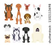 dogs collection. vector... | Shutterstock .eps vector #1102113698