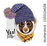 vector lemur with blue knitted...   Shutterstock .eps vector #1102126028