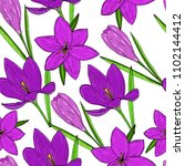 vector pattern with violet and... | Shutterstock .eps vector #1102144412