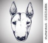 english bull terrier portrait.... | Shutterstock .eps vector #1102216886