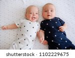 two adorable twin babies... | Shutterstock . vector #1102229675