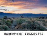 Two deer in profile at sunrise standing in sagebrush with the snowy White Mountain range of Southern California near Bishop in the distance and a colorful orange and purple clouds of sunrise overhead
