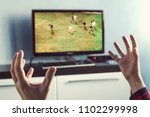excited soccer fan watching a... | Shutterstock . vector #1102299998