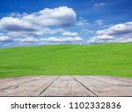 garden grass with beautiful sky. | Shutterstock . vector #1102332836