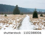 Hiking Path In The Hautes...