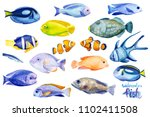 set of colored fishes  marine... | Shutterstock . vector #1102411508