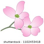 hand drawn flowering dogwood... | Shutterstock .eps vector #1102453418