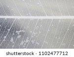 macro structure white delicate... | Shutterstock . vector #1102477712