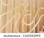 elements of decorative floral... | Shutterstock . vector #1102542995