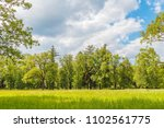 green grass meadow in the... | Shutterstock . vector #1102561775